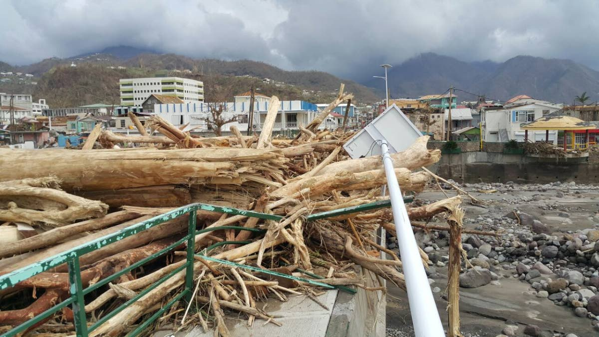 Clemson students plan to help Dominica after Hurricane Maria