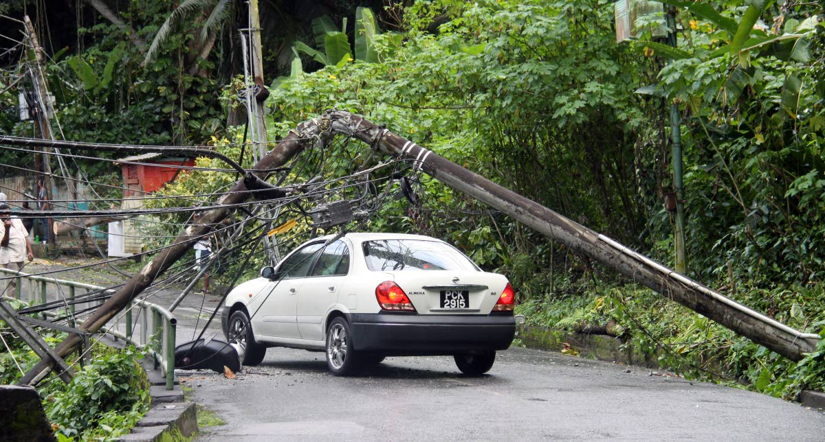 Falling Branches Narrowly Miss Man Down Utility Lines Trinidad