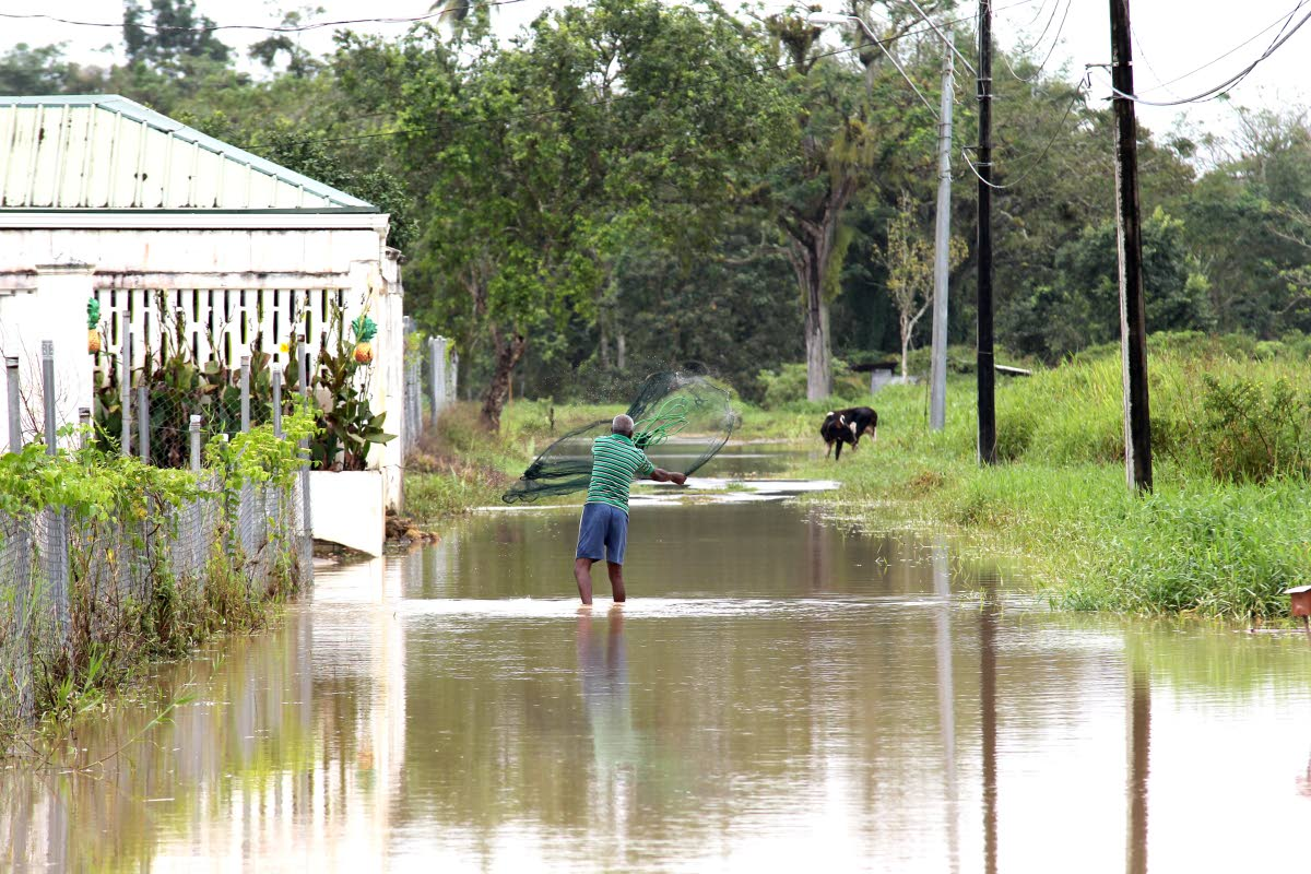 File photo: A resident along Nanan South Trace, along Rochard Douglas Road, Barrackpore, tries his hand at cast fishing in flood waters.