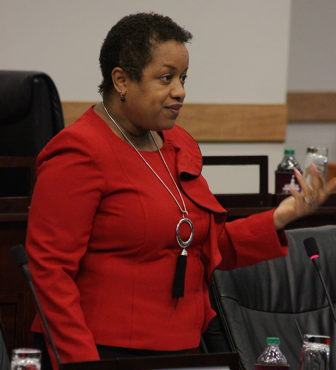 File photo: Minister in the Finance Ministry Allyson West speaks during a sitting of the Senate.