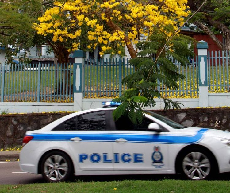 A police vehicle passes by this poui tree that is in  full blossom at the front of the San Fernando General Hospital. PHOTO BY ANIL RAMPERSAD.