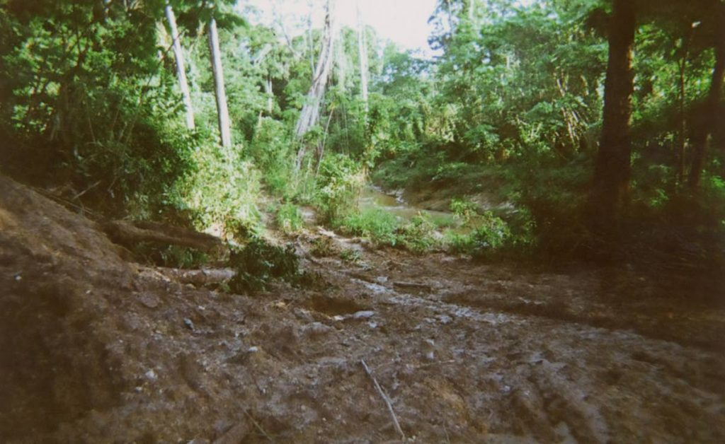 Forests are stripped away by illegal quarry operators leaving communities vulnerable to flooding.