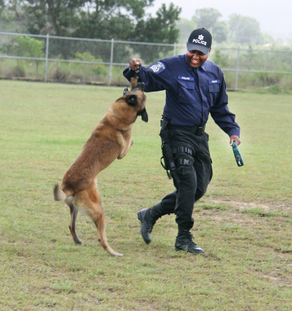 File photo: Dani undergoes training with his handler Cpl Stephen Swanson of the TT Canine Police.