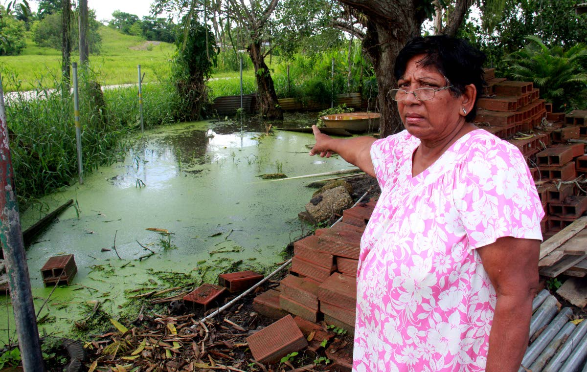 Kamla Singh, of Tennant Road, Woodland points to stagnant water  in her yard yesterday. PHOTO BY ANIL RAMPERSAD.