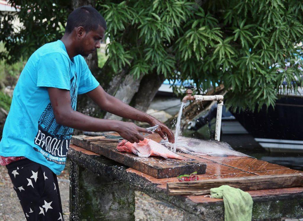 File photo: Fish vendor Rakesh Mohammed cleans fish at Alcan fishing depot, Chaguaramas.