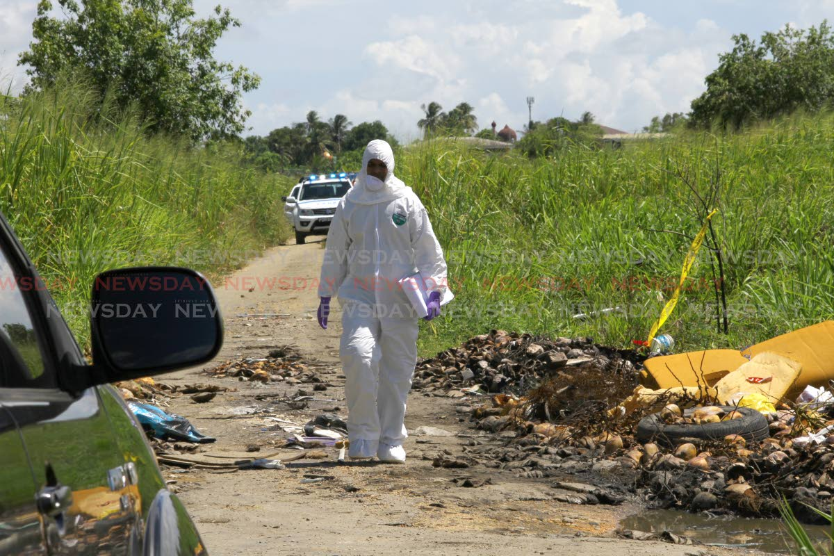 A crime scene investigator walks along dirt road where the body of Jose Tito Rivas was found in a car in Cunupia on Thursday. Rivas was the driver for El Salvador Ambassador Raymundo Ernesto Rodriquez Diaz.  PHOTO BY ROGER JACOB