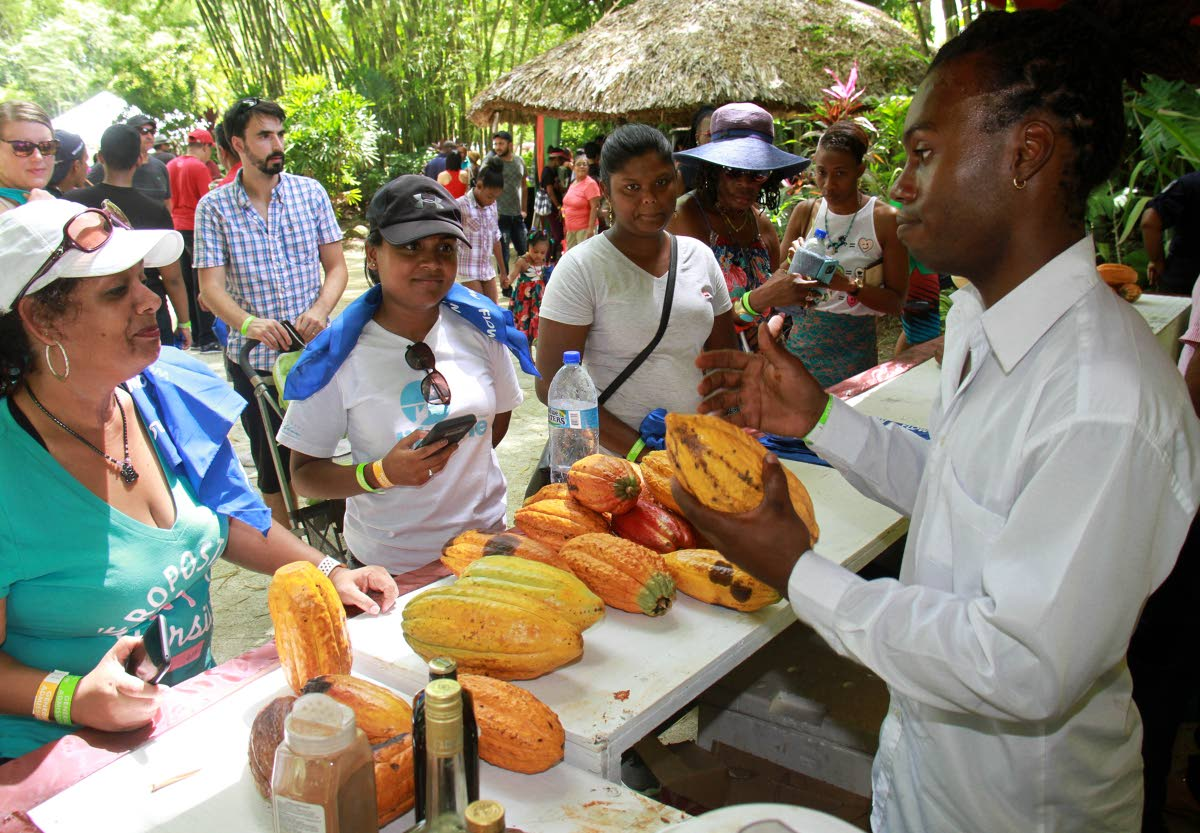Isidore Vincent of Shandies Bar in Couva shows off his cocoa to patrons earlier this year at the Montserrat Cocoa Farmers Co-operative Society Ltd, Cocoa Food Festival at La Vega Estate in Gran Couva.