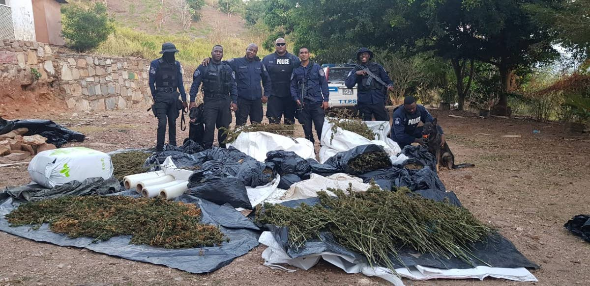 Cops stand over a million-dollar haul of marijuana and stolen car parts, a result of an exercise conducted on Wednesday