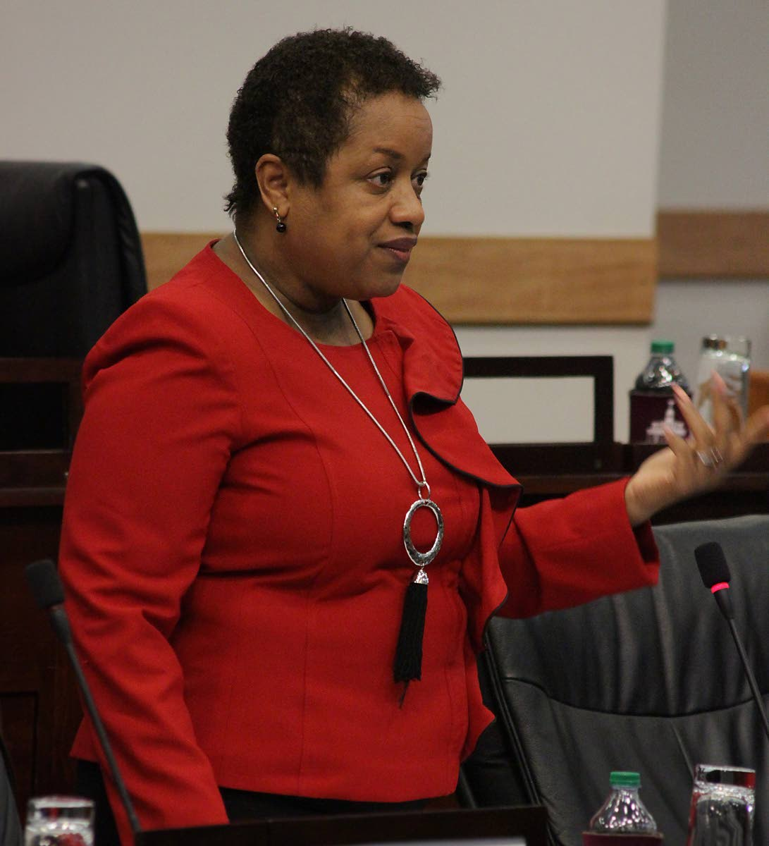 Minister in the Finance Ministry Allyson West speaks during a sitting of the Senate.