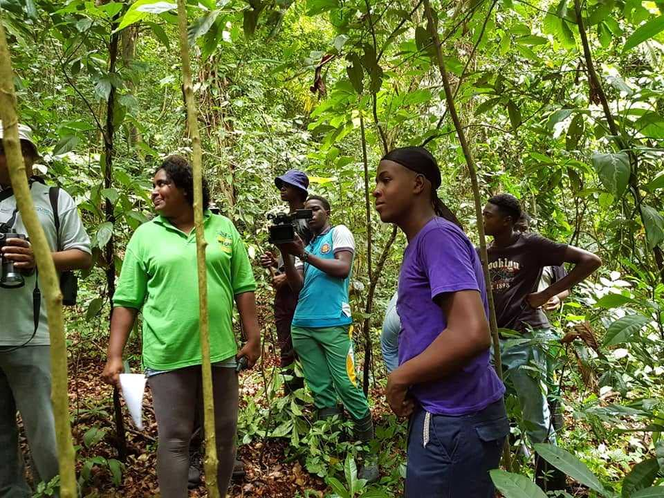 Field research training with focus on the  humming bird underway at Main Ridge Forest Reserve, Tobago.
