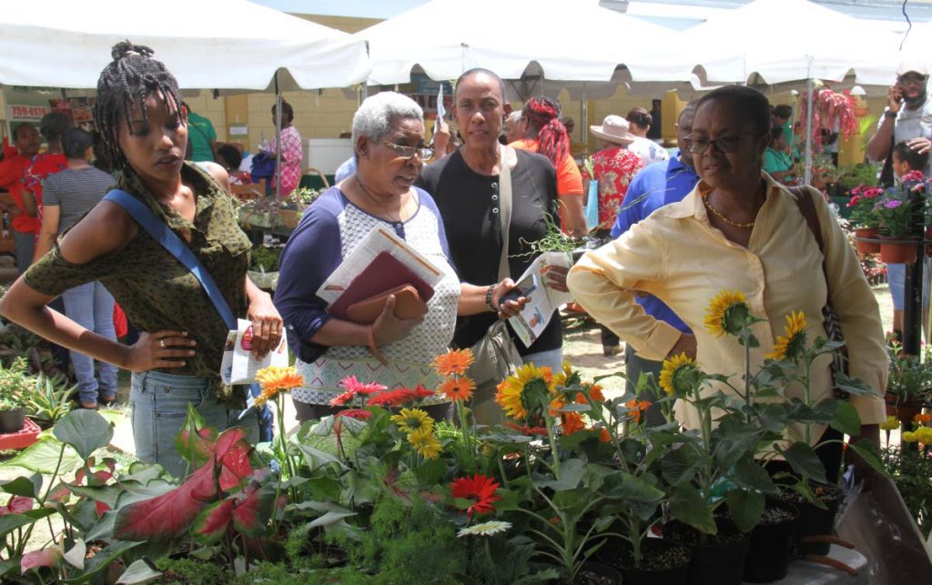 Women look at gerbera flowers. Photo by Angelo Marcelle