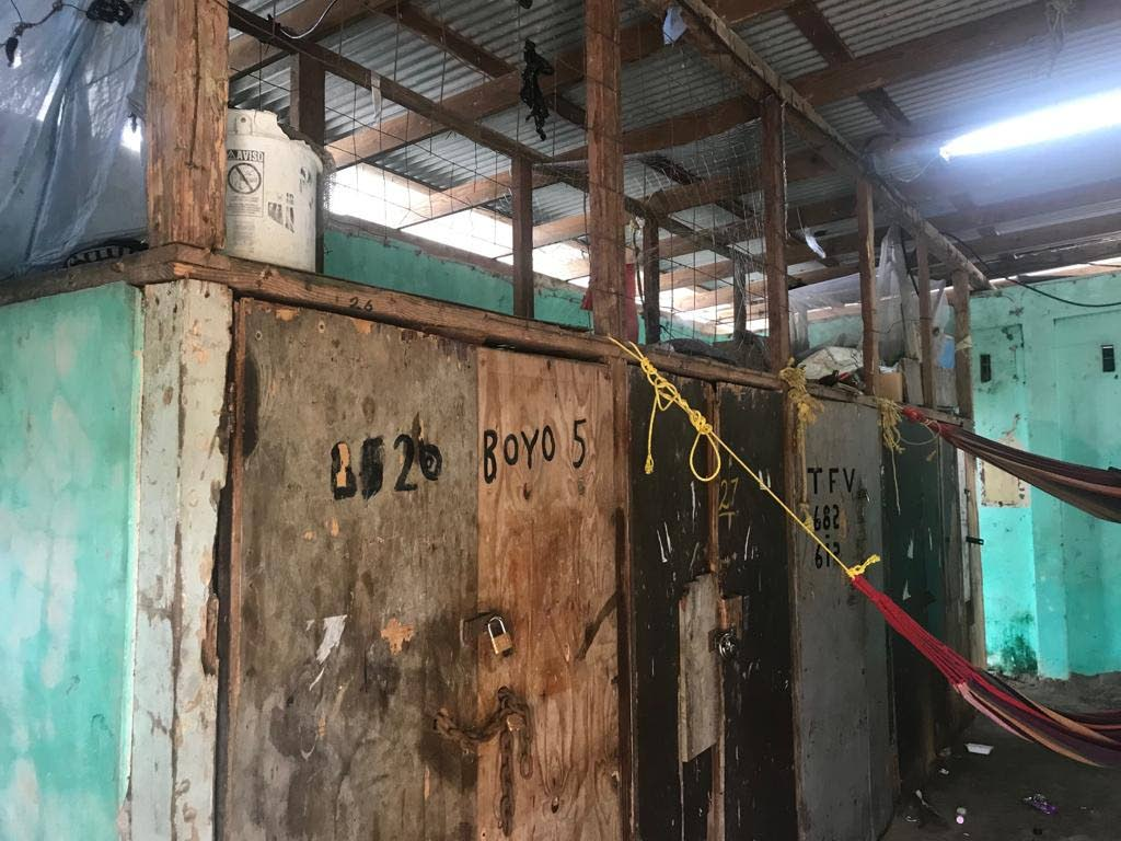 WOULD YOU BUY FISH HERE?: The inside of the Moruga Fish Depot.