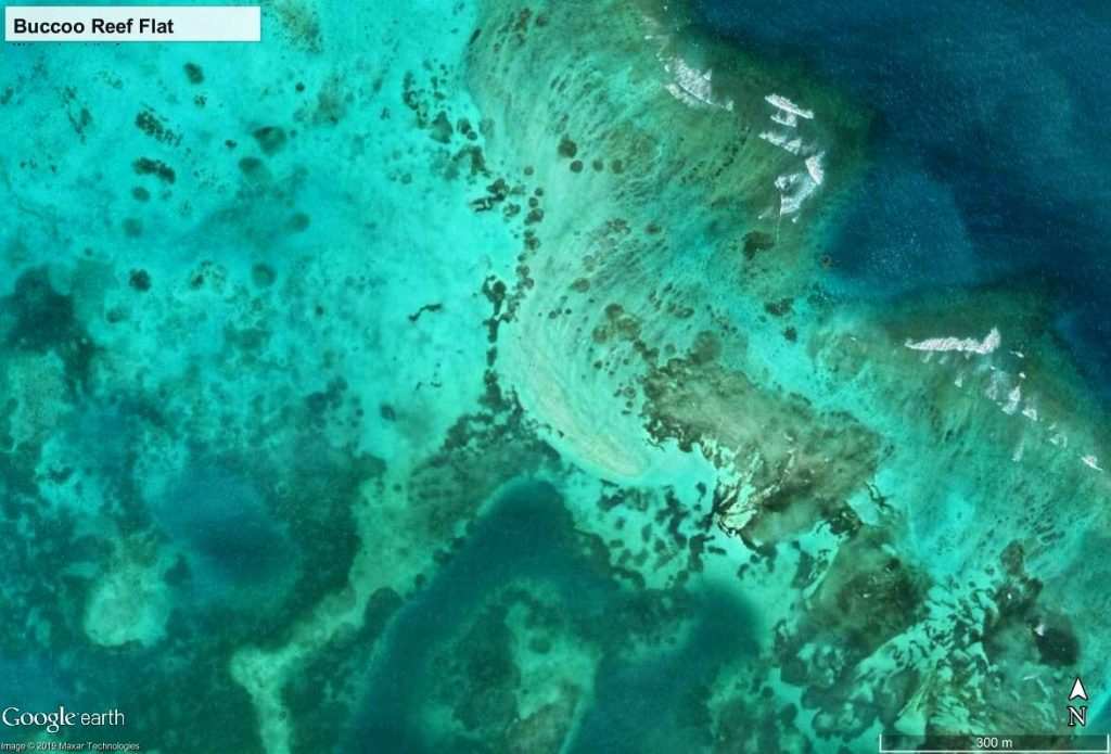 Patch reefs and halos of Buccoo Reef are hard to find and may be symbolic of a compromised coral reef community. Photo by Google Earth Pro.
