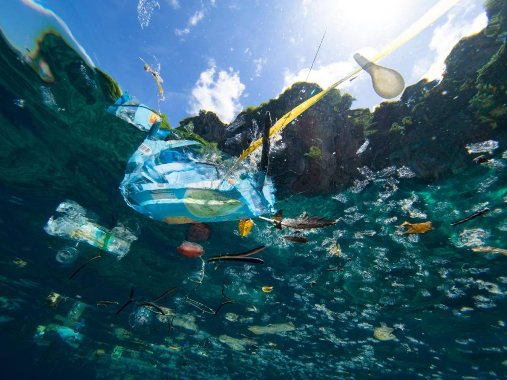 By 2050, there could be more plastic in the ocean than fish. -
