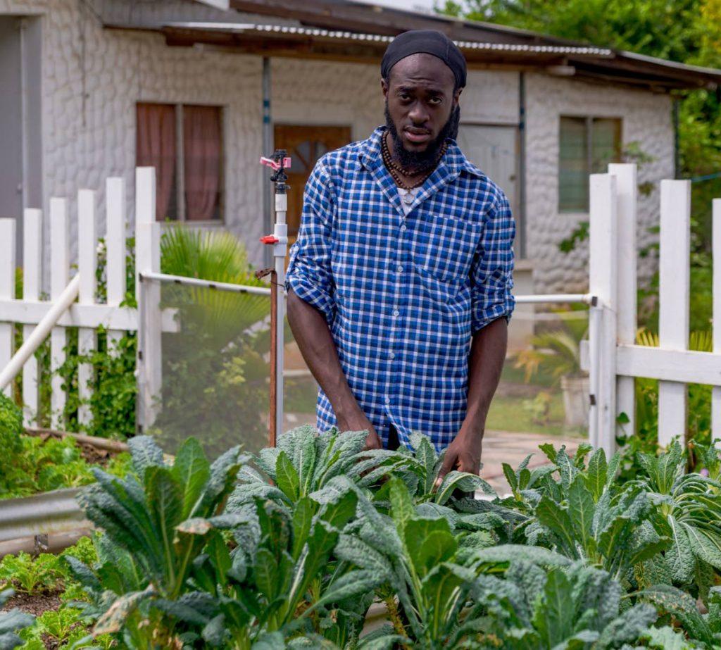 Farmer Jabez Van John at his garden in Canaan. - DAVID REID