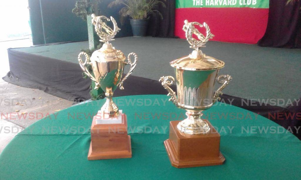 Trophies which will be at stake at this weekend's TT International Rugby Sevens tournament.  PHOTO BY JOEL BAILEY - Joel Bailey