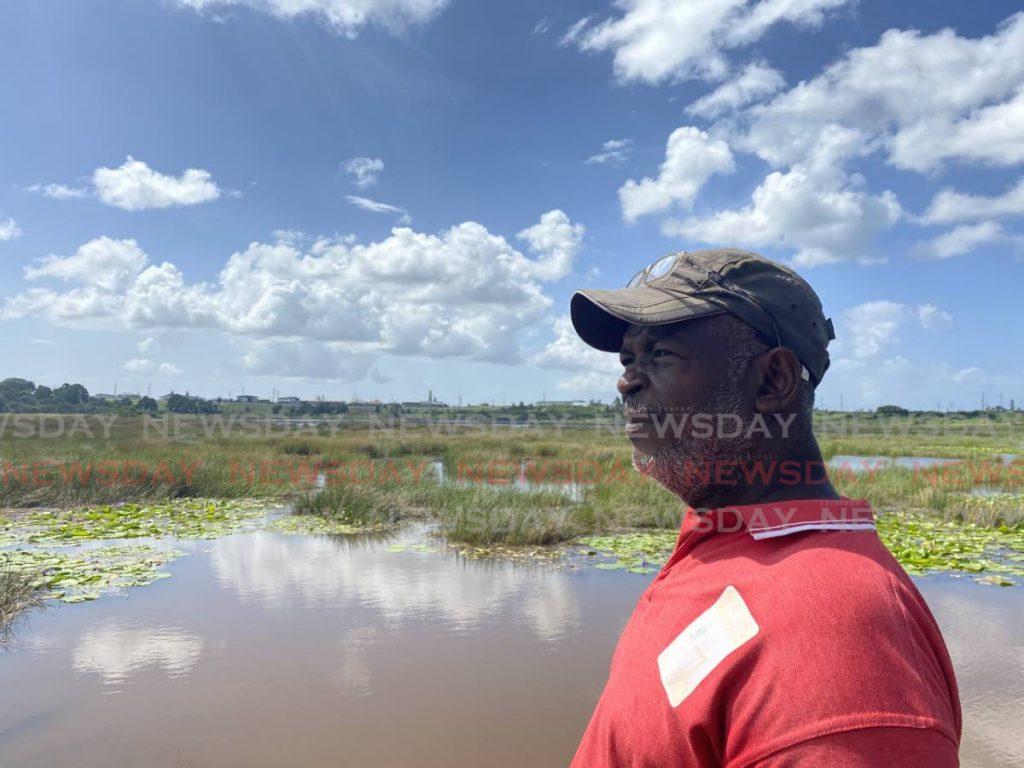 Pitch Lake tour guide Garvin Charles surveys the lake. - Carla Bridglal