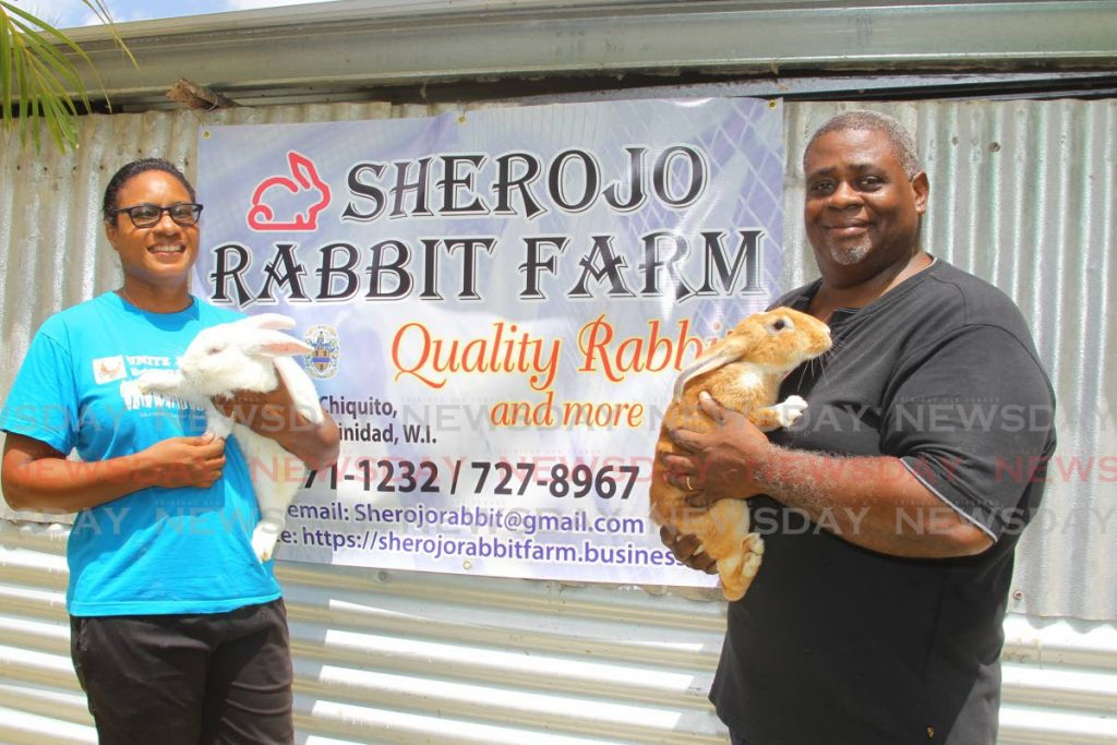 Sherry Ann Beach-Sealey holds Winston, a New Zealand white rabbit alongside her husband Roger Sealey who holds Thora, a New Zealand red rabbit at Sherojo Rabbit Farm in Manzanilla.  -