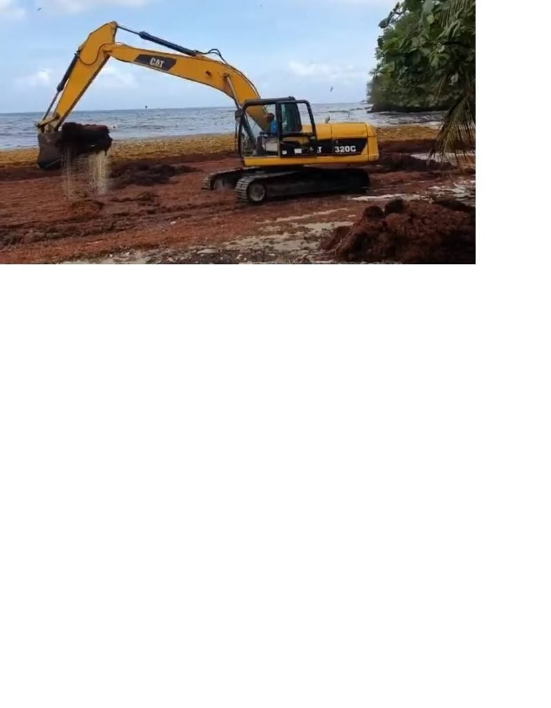 A screengrab from a Division of Infrastructure, Quarries and Environment video shows an excavator at Delaford Bay removing sargassum from the shore on Monday.  -