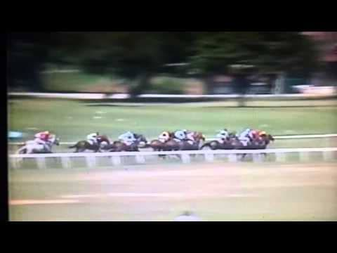 Horseracing action at the Queen's Park Savannah. -