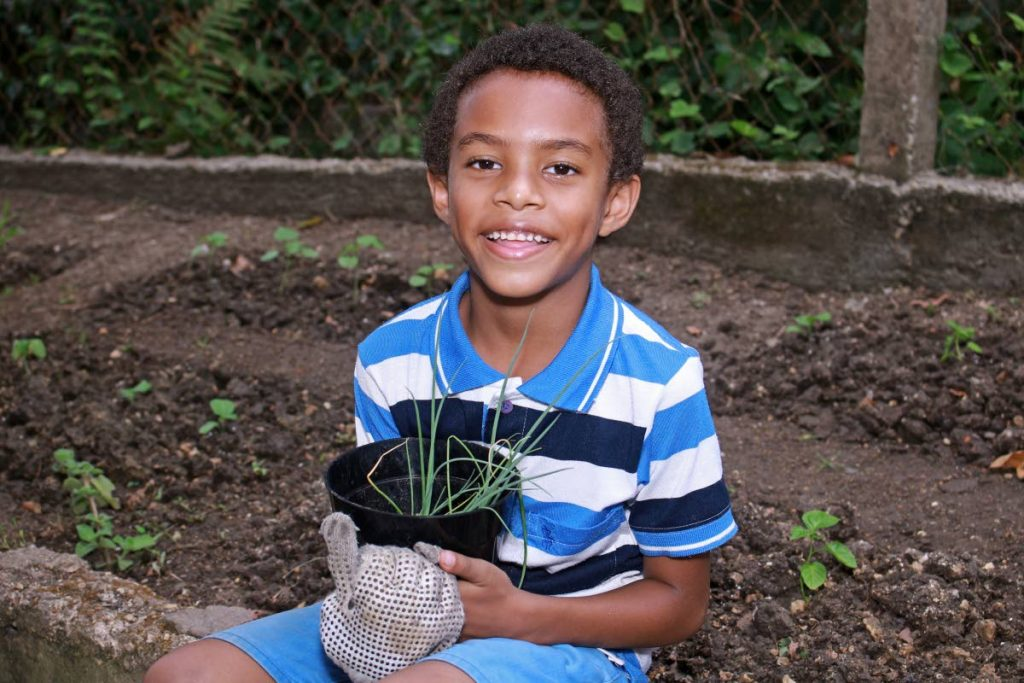 Jevon Augustus holds on to a pot of chive which he proudly planted in  his home garden. File photo -