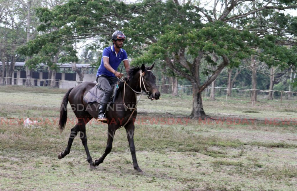Exercise rider Andy Solozano, takes an unnamed two-year-old horse for a ride at Humming Bird Stables, Race Course Road, Carapo, Arima recently.  - ANGELO_MARCELLE