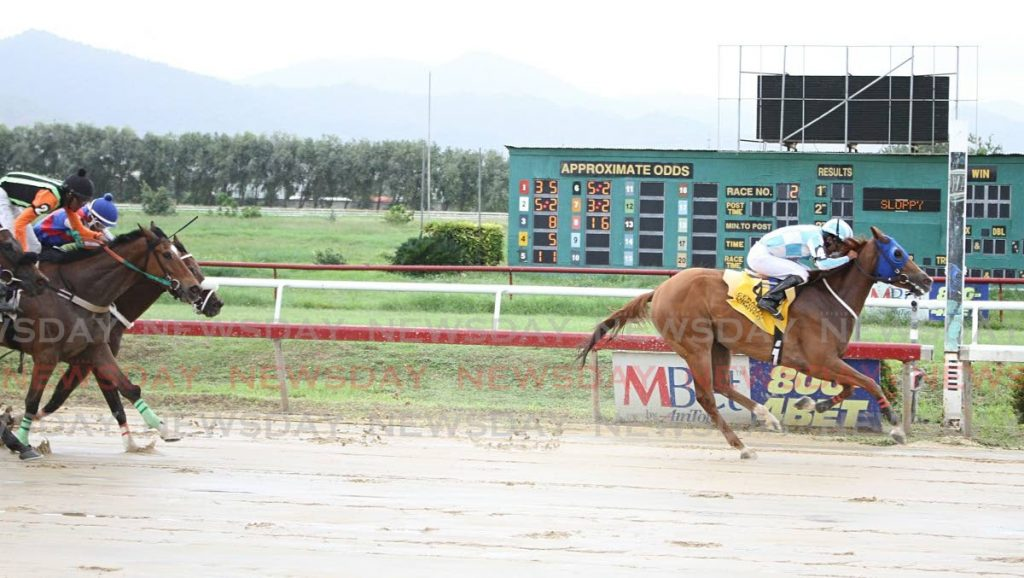 Lady Hamilton (R) won Race 2 at Santa Rosa Park, Arima on Saturday, on the first day of races at the Arima Race Club since government eased its covi19 saftey measures. - Angelo M. Marcelle