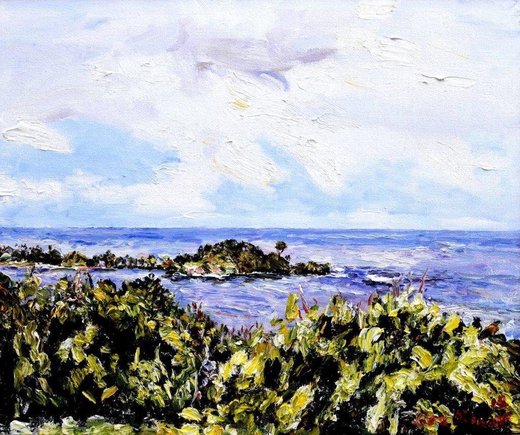 Balandra Peninsula by Lisa O'Connor. -
