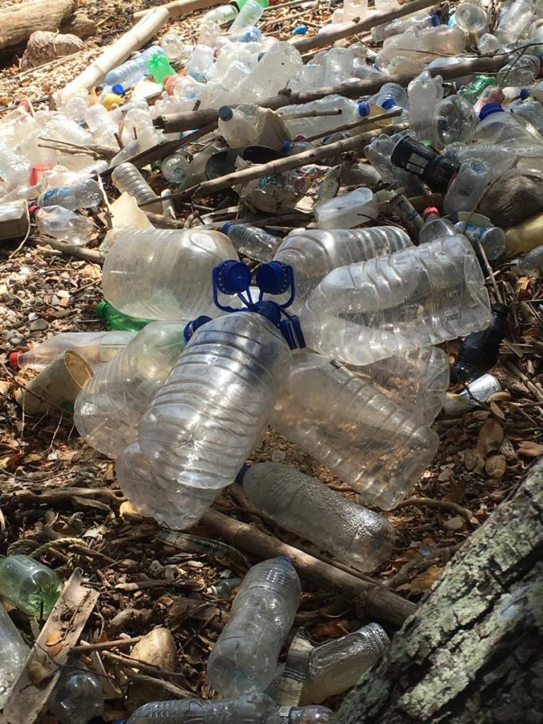 Plastic bottles littered along Chacachacare Beach -