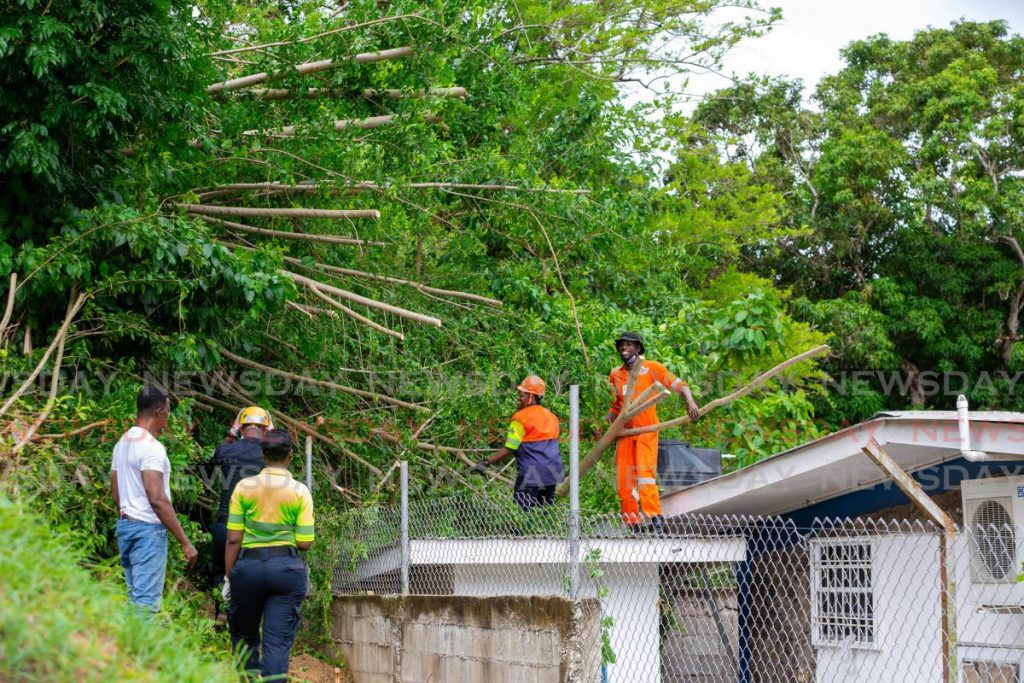 TEMA workers remove a tree which fell on the roof of Les Couteaux Health Centre, due to Tropical Storm Gonzalo, in Tobago on Saturday. PHOTO BY DAVID REID -