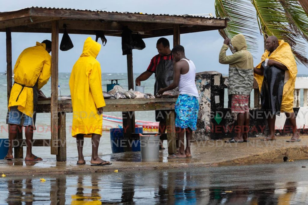 Fishermen brave the bad weather to sell at Lambeau Fish Depot, Tobago on Saturday morning despite a warning for Tropical Storm Gonzalo which by late afternoon had been downgraded to a depression. - David Reid