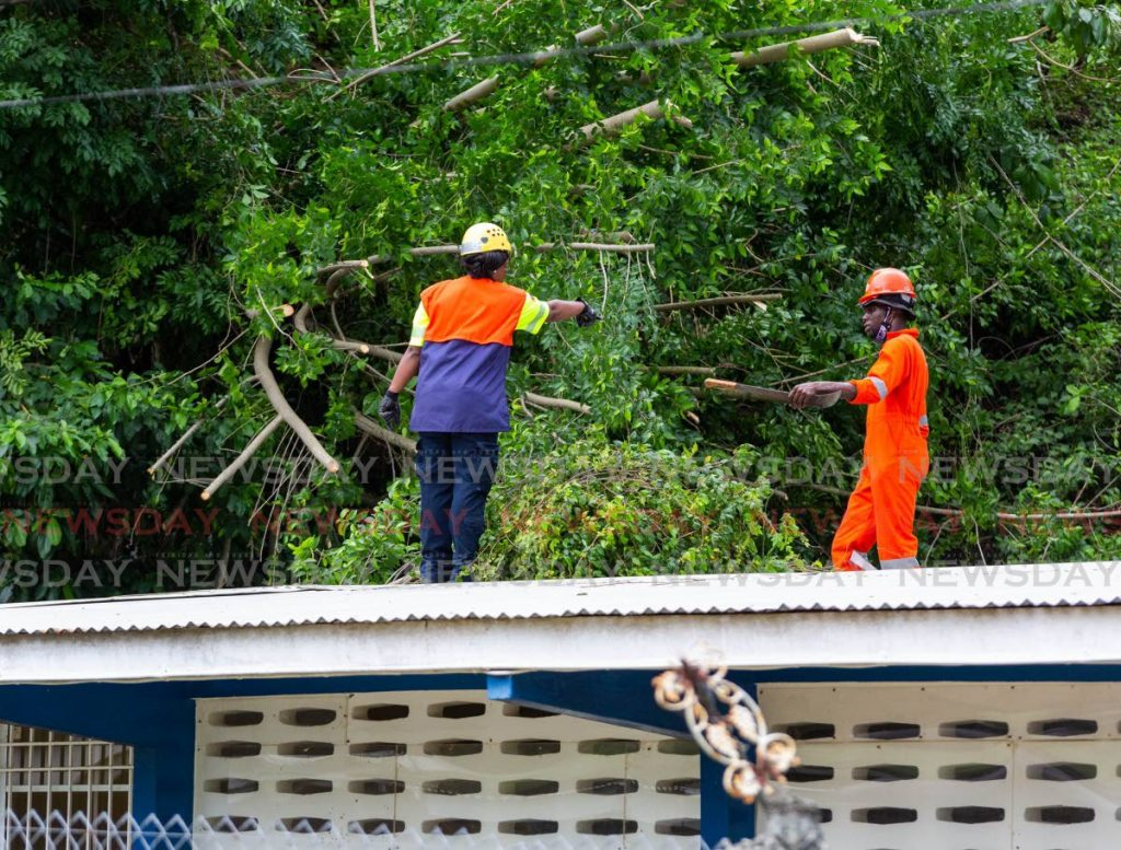 TEMA workers remove a tree which fell on the roof of Les Couteaux Health Centre during the passage of Tropical Storm Gonzalo on Saturday. PHOTO BY DAVID REID -