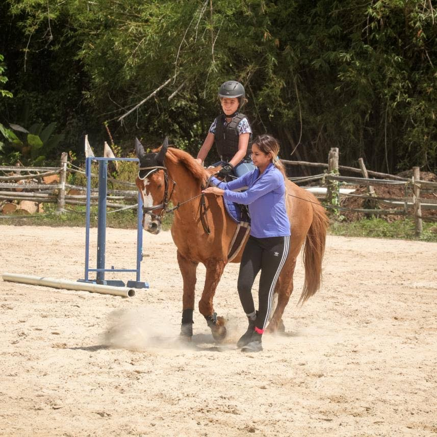 Equestrian coach Garcia resumes work with TT riders - Trinidad and Tobago Newsday