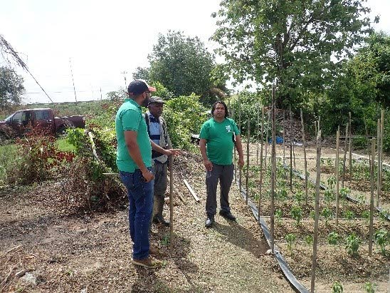 Interviews with stakeholders and field sampling conducted during farmers's survey in the Cunupia and New Guayamare watersheds. PHOTOS COURTESY IMA -
