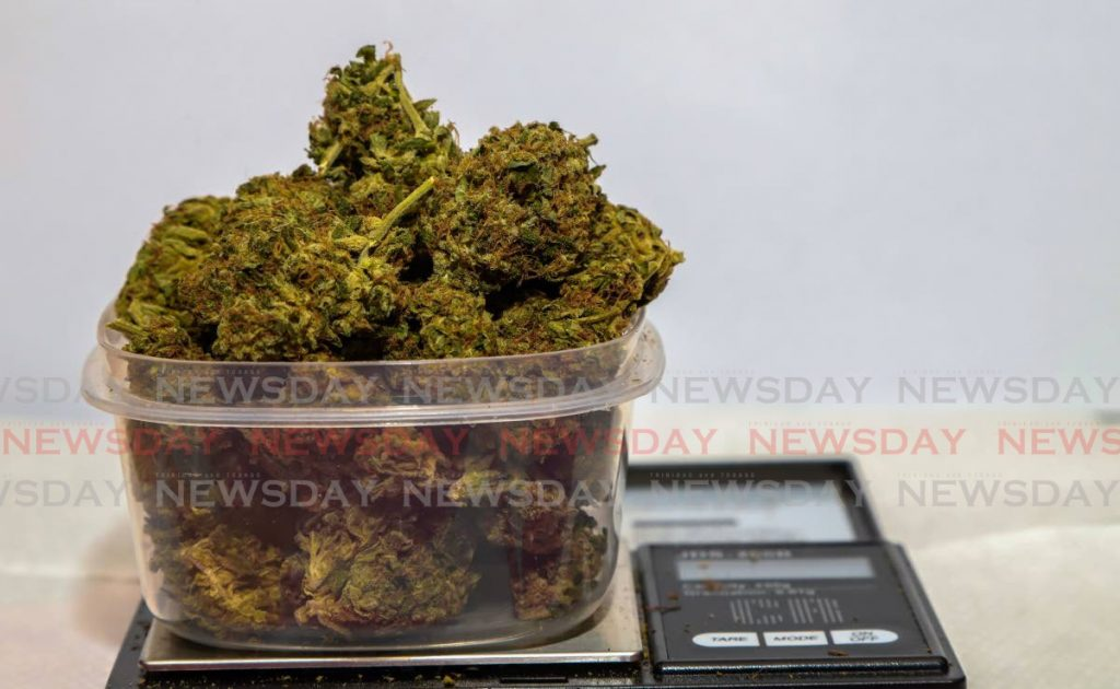 Thirty grammes of wedding cake marijuana. While the use of small amounts of marijuana has been decriminalised the use of derivatives is part of a legislation under review by a joint select committee of Parliament. - Jeff K. Mayers