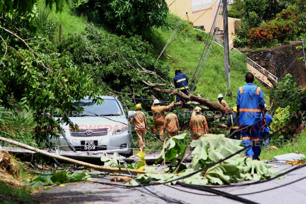 T&TEC workers, fire officers and residents work on clearing Hirondelle Road in Morvant after a tree fell on power and utility lines during heavy rain and wind on Wednesday.   - ROGER JACOB
