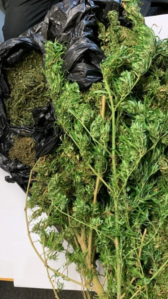 Marijuana found at the home of a Palo Seco labourer on Friday.