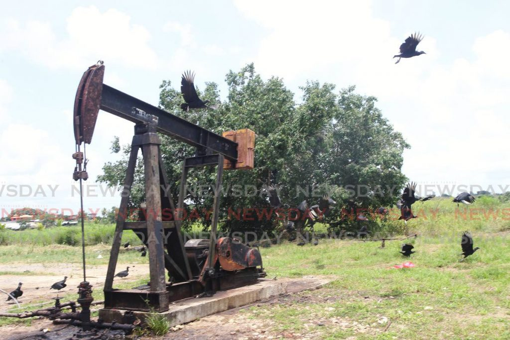 A committee of corbeaux gather around a pump jack as if it was a dying animal on Wilson Road in Penal on Tuesday. The Central Bank in its economic bulletin on Tuesday noted decreases in oil production in the second quarter of 2020. - Lincoln Holder