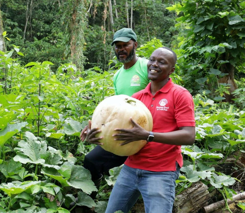 Chief Secretary Ancil Dennis lifts a pumpkin on a recent visit to Grazer One Farm. PHOTO COURTESY THA  -