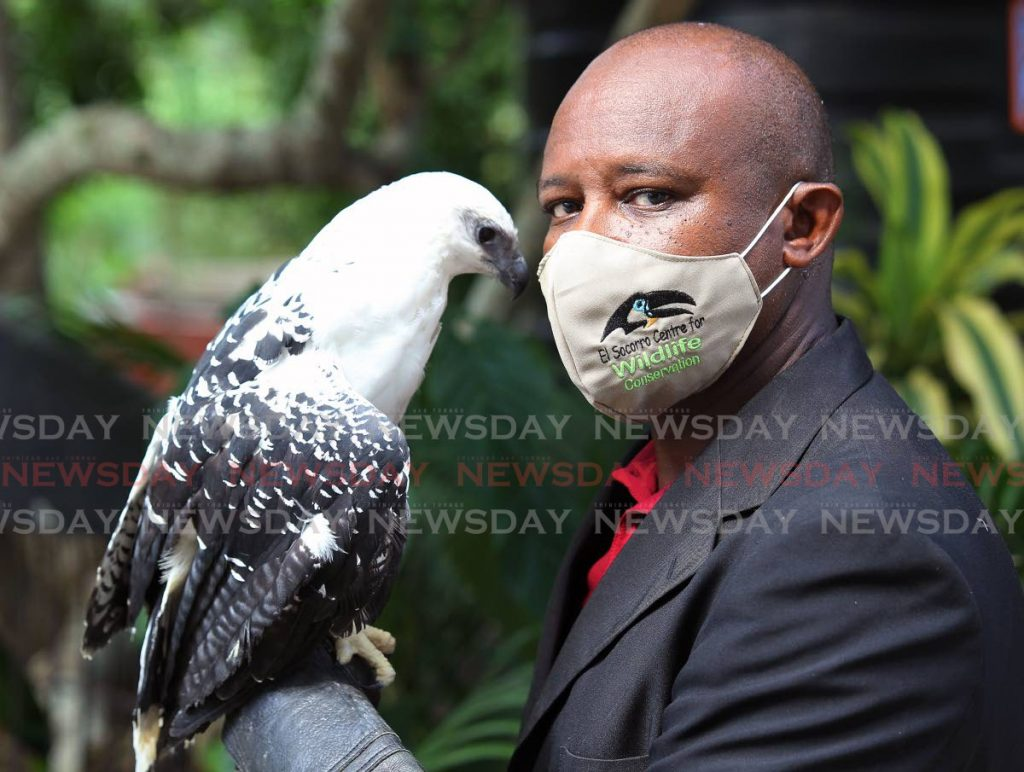 Face-off: Ricardo Meade  founder and director of the El Socorro wildlife conservation with his white hawk named