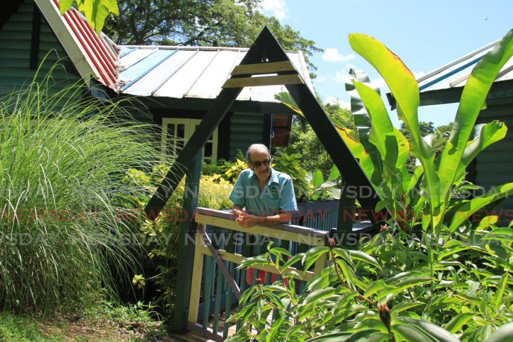 Owner of the Adventure Farm and Nature Reserve Ean Mackay looks at his ginger lily plant at the Adventure Farm and Nature Reserve on Arnos Vale Road, Plymouth. Photos by Ayanna Kinsale