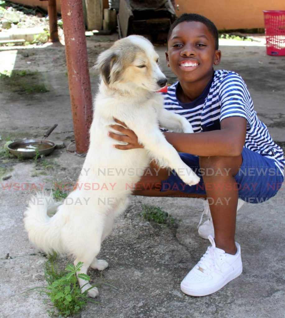 Derron Power-Bernard plays with his dog Charlie at his home on Tumpuna Road, Arima. PHOTOS BY ANGELO MARCELLE -