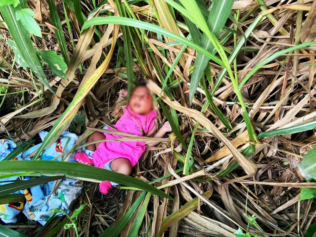 CRUEL AND INHUMANE: This photo, provided by the TTPS, shows a baby girl found abandoned in some bushes in Freeport on Thursday morning. The baby is now in the care of doctors and nurses at Couva Health Centre and is said to be in a good condition.