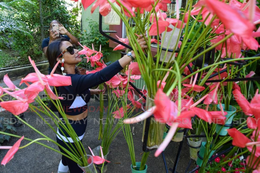 Designer Shoma Persad shops at the Horticultural Society's annual plant sale at its headquarters, Lady Chancellor Road, Port of Spain, on Saturday morning. - Vidya Thurab