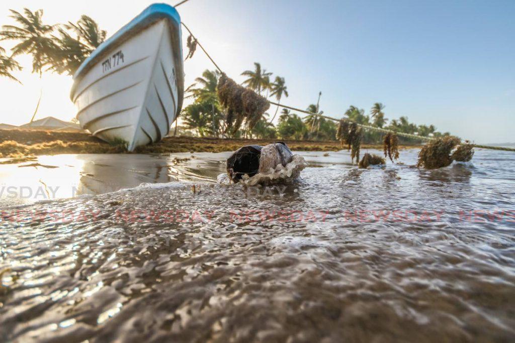 A fishing boat on the seaweed-draped shoreline in Mayaro. PHOTO BY JEFF MAYERS -