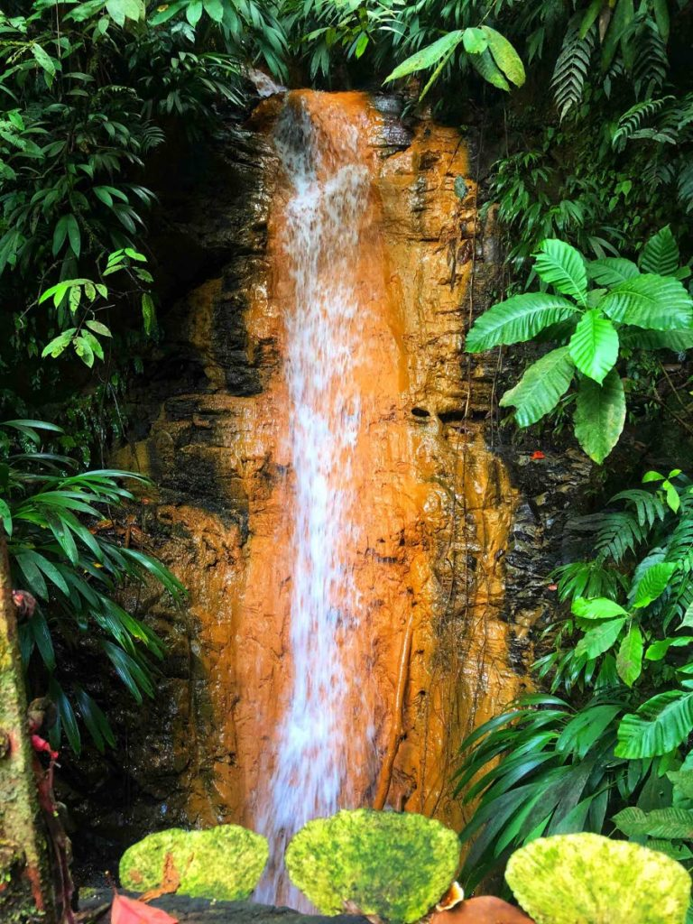 A waterfall with deposits of clay along its rock face in the Main Ridge Forest Reserve. - ANJANI GANASE