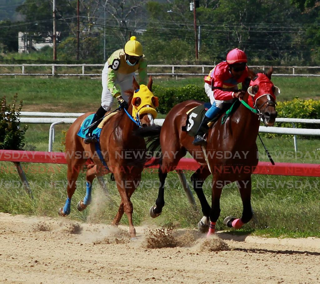 ARIMA Race Club (ARC) is unlikely to be staging the Triple Crown this year, due to the coronavirus pandemic. (File Photo)