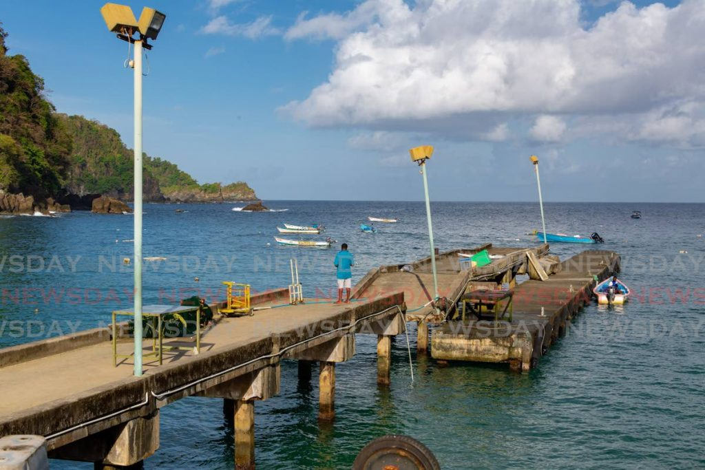 A man looks at the damage on Friday after the Parlatuvier jetty broke into two pieces.  - DAVID REID