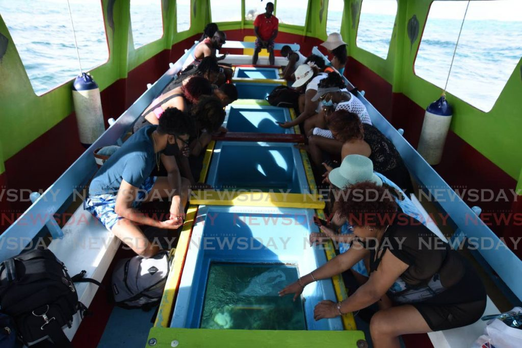 Passengers on a glass-bottom boat observe the corals in Buccoo Reef. - Ayanna Kinsale