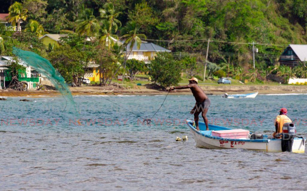 Fishermen cast nets in Speyside, Tobago. Photo by David Reid